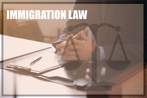 U.S. Past and Present Immigration Law